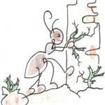 Formichina vuole riutilizzare una zona del suo giardino che era abbandonata